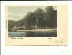 Aywaille Souvenir Le Parc ( Carte 1900 Couleur ) - Aywaille
