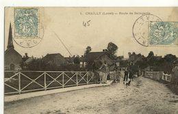 CPA (45) CHAILLY Route De Bellegarde (b.bur) - Autres Communes