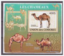 284 Comores 2009 Kameel Camel Chameaux S/S MNH - Timbres