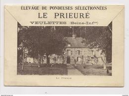 Veulettes Elevage De Pondeuses Dépliant - France