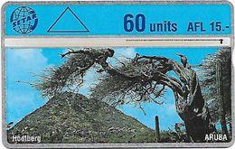 ARUBA 60 Units (503B) - Aruba