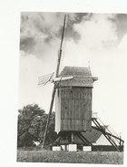 Huise - Huisekoutermolen- Anno 1975 - Zingem