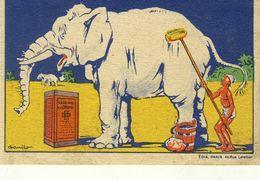 ( CHROMOS) LESSIVE LACROIX (les Animaux Blancs) Elephant    (b.bur Theme) - Chromos