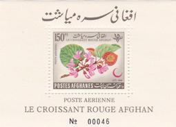 Afghanistan,Yvert BF 34 1962 Red Cross Souvenir Sheet MNH - Afghanistan