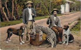 Costa Rica - Leopard (chasse Au Léopard, Chasseurs, Chiens Et Fusils) - Costa Rica