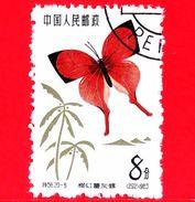 CINA - Usato - 1963 - Farfalle - Common Yamfly (Loxura Atymnus) - 8 - 1949 - ... Repubblica Popolare