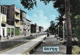 Marche-ascoli Piceno-porto S.elpidio Via Umberto I Veduta Case Negozi Auto D'epoca Persone Panchine Giardini  Anni 60 - Italia