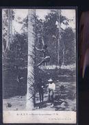 CENTRE AFRIQUE RECOLTE CAOUTCHOUC - Cartes Postales