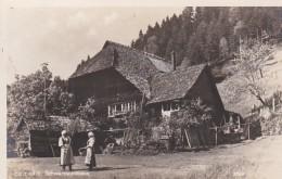 2869317Holzwald, Schwarzwaldhaus - Bad Rippoldsau - Schapbach