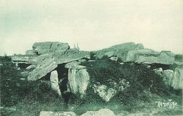 PIE-17-P.T. 4225 : PORNIC LOIRE ATLANTIQUE. DOLMENS DES MOUSSEAUX - Dolmen & Menhirs