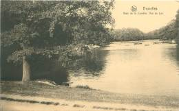 BRUXELLES - Bois De La Cambre.  Vue Du Lac - Bossen, Parken, Tuinen