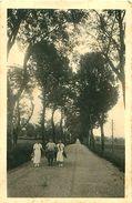 Cpsm ARINTHOD 39 La Belle Route Ombragée De Saint Hymetière - Otros Municipios