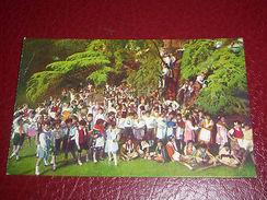 Cartolina Festa Di Giovinezza A Udine Per La Celebrazione Del Pane -- 1920 Ca - Udine