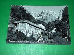 Cartolina Molveno ( Dolomiti Di Brenta ) - Particolare 1955 - Trento