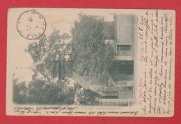 Croissy  - La Vieille Eglise - Croissy-sur-Seine