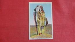 Old Chief Crazy Horse  Sioux  Ref 2631 - Indiens De L'Amerique Du Nord