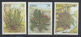 °°° IRLANDA EIRE - Y&T N°589/91 - 1986 MNH °°° - Nuovi