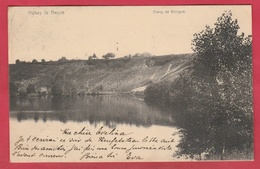Habay La Neuve - Etang De Bologne - 1907 ( Voir Verso ) - Habay