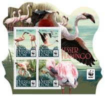Z08 SRL17520a SIERRA LEONE 2017 WWF - Lesser Flamingo MNH ** Postfrisch - Sierra Leone (1961-...)