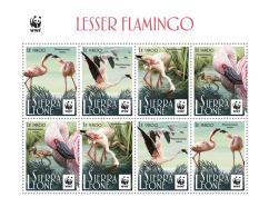 Z08 SRL17520c SIERRA LEONE 2017 WWF Lesser Flamingo (2 Sets) MNH ** Postfrisch - Sierra Leone (1961-...)