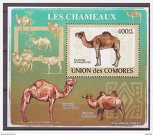 0284 Comores 2009 Kameel Camel Chameaux S/S MNH - Autres