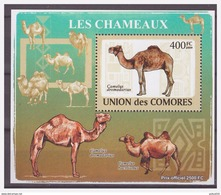 0284 Comores 2009 Kameel Camel Chameaux S/S MNH - Timbres