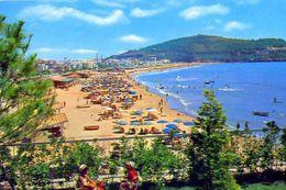 Gaeta - Latina - Serapo La Spiaggia - 8 - Formato Grande Viaggiata – E 2 - Latina
