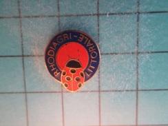 Sp06 Pin's Pins : Rare Et Belle Qualité !  COCCINELLE RHODIAGRI LITTORALE   ; Marquage Au Dos : - - - - Animals