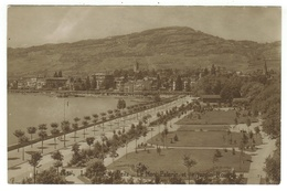 Suisse // Schweiz // Switzerland // Vaud // La Tour-de-Peilz, Le Jardin Roussy - VD Vaud