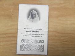 Saint Philbert Des Champs .denise Spruytte - Autres Communes