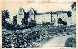 UN VIGNOBLE BORDELAIS LE CHATEAU YQUEM - Bordeaux