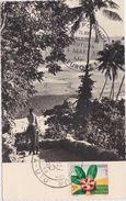 WALLIS ET FUTUNA  Aux Philatélistes Leurs Habitants Reconnaissants 4 Mars 1958 - Wallis And Futuna