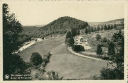 BE HERBEUMONT / Route De  Florenville / CARTE GLACEE - Herbeumont
