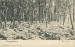 BE HERTOGENWALD / Sous Bois / NELS, SERIE 98 N°44 - Belgique