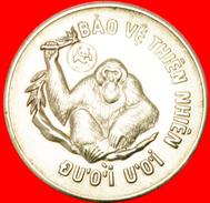 § ORANGUTAN: VIETNAM ★ 10 DONG 1997! LOW START★ NO RESERVE! - Viêt-Nam