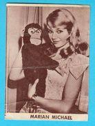 MARIAN MICHAEL  -  Yugoslavian Vintage Gum Card 1960's - Cinema & TV