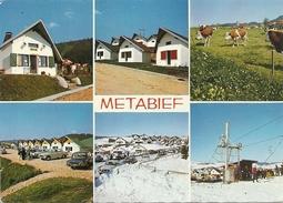 CPM .MULTIVUES METABIEF-MONT-D'OR . Alt 1.000m . Station Climatique Ete-hivers+ 404-AMI8-SIMCA 1000 .etc . NON ECRITE - France