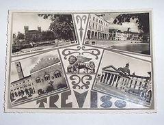 Cartolina Treviso - Vedute Diverse 1950 - Treviso
