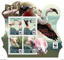 SIERRA LEONE 2017 - WWF Flamingo M/S. Official Issue - W.W.F.