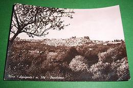 Cartolina Naro ( Agrigento ) - Panorama 1951 - Agrigento