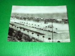 Cartolina Rimini - Capanni Al Mare 1951 - Rimini