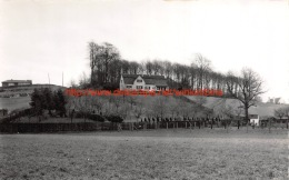 Berg - Pamel - Roosdaal