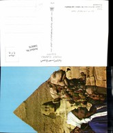 546676,Africa Egypt Cairo Kairo Gizeh Kamel Camel Sphinx - Ägypten