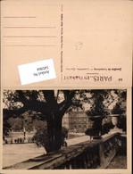 545964,Luxembourg Luxemburg Gardens - Ansichtskarten