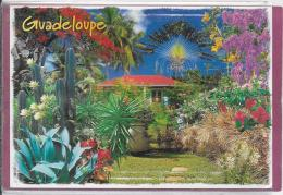 10 CPM   LA GUADELOUPE - 5 - 99 Cartoline