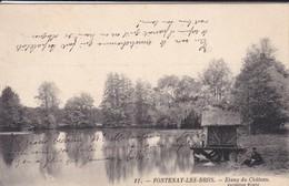 91----FONTENAY LES BRIIS--etang Du Château--voir 2 Scans - Autres Communes