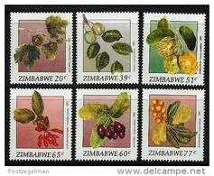ZIMBABWE 1991, Mint Never Hinged Stamps, Fruits, Nrs. 460-465, #5115 - Zimbabwe (1980-...)