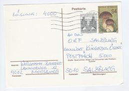 1991 AUSTRIA 4+50 UPRATED Postal STATIONERY CARD Cover Mushroom Fungi - Stamped Stationery