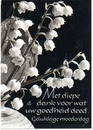 Moederdag Wensen Meiklokjes Muguets - Fête Des Mères