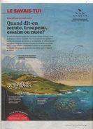 Page Coop Theme Vol Essaim - Journaux - Quotidiens